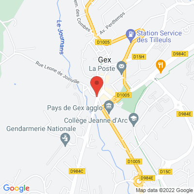 1 rue du commerce, 01170 Gex