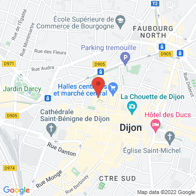 Application Zoom, 21000 Dijon