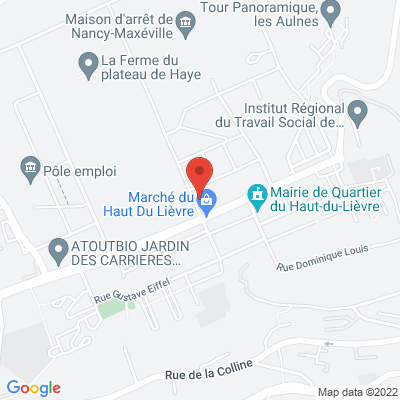 64 RUE HENRY BRUN, 54000 Nancy