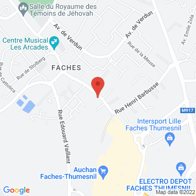 66 RUE HENRI  BARBUSSE, 59155 Faches-Thumesnil